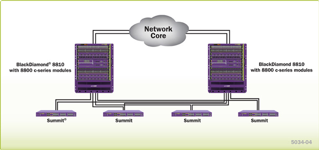 ideal core network for a small to medium-sized network with high-performance and high density.