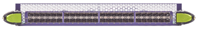 48-Port 10GbE Fiber Interface Module